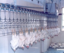 Dispatch of Poultry Processing Equipment
